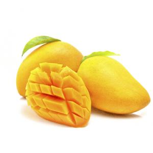 芒果 18